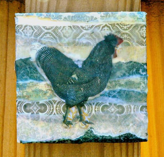 Snapshots- Chicken