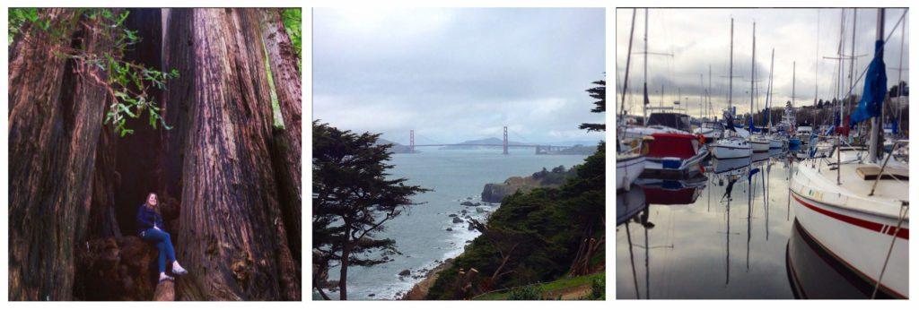 Seattle to San Fran